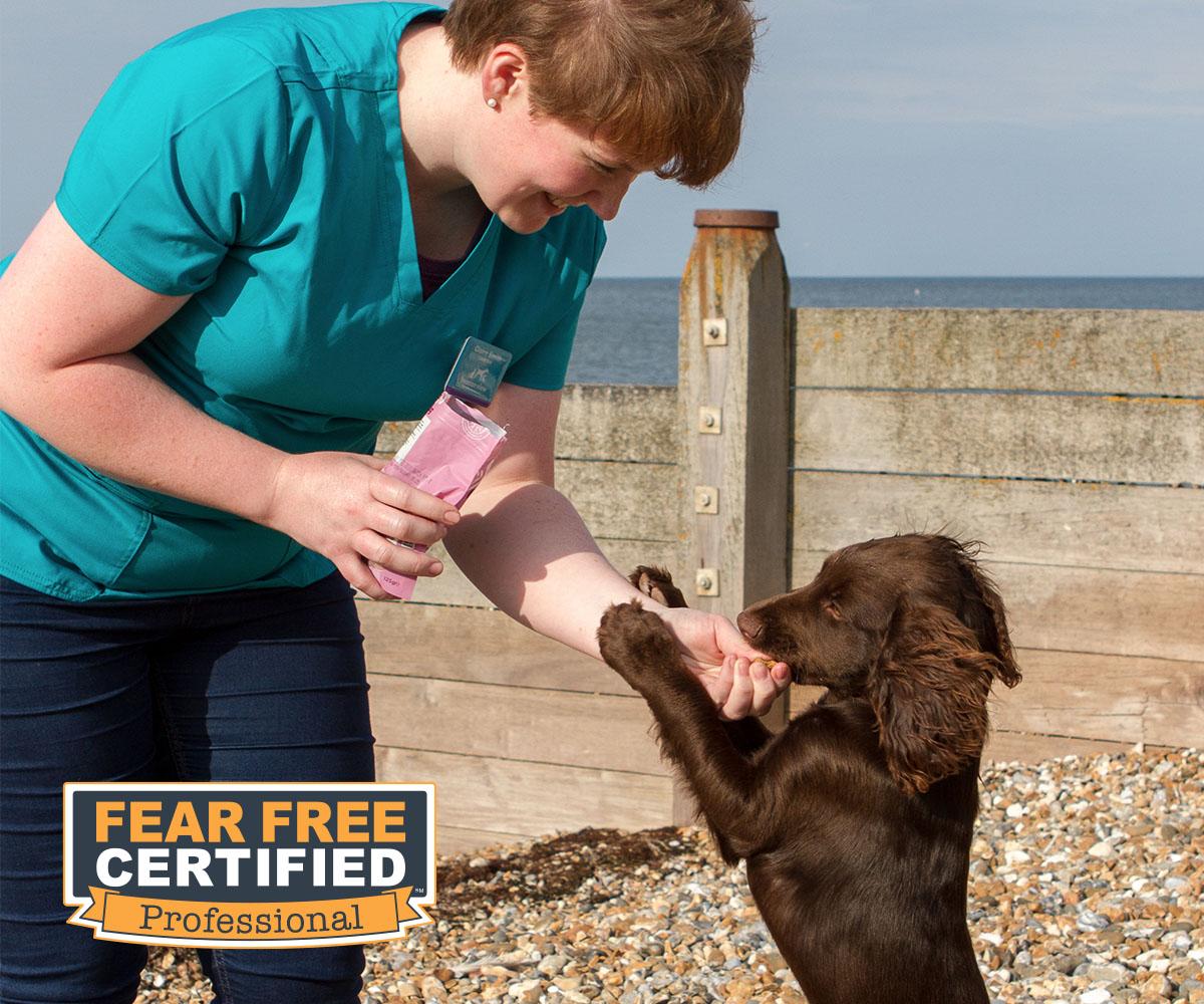 Dog enjoying a treat from a friendly vet